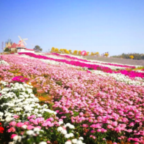 惠州尚天然国际温泉小镇